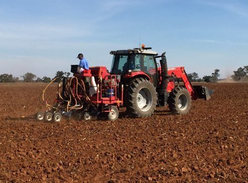 Sowing irrigated trials at Hillston