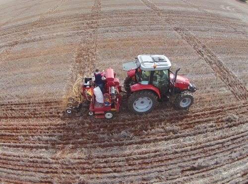 Sowing trials at Barellan