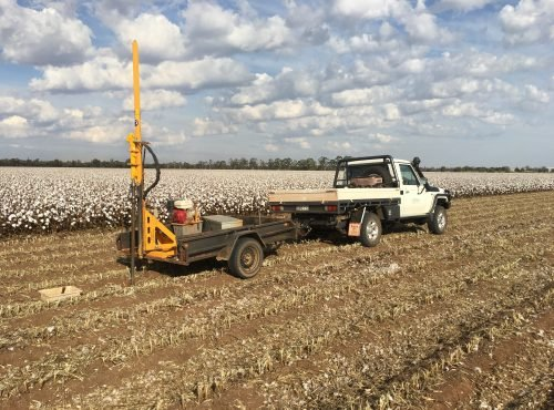 Soil testing after cotton