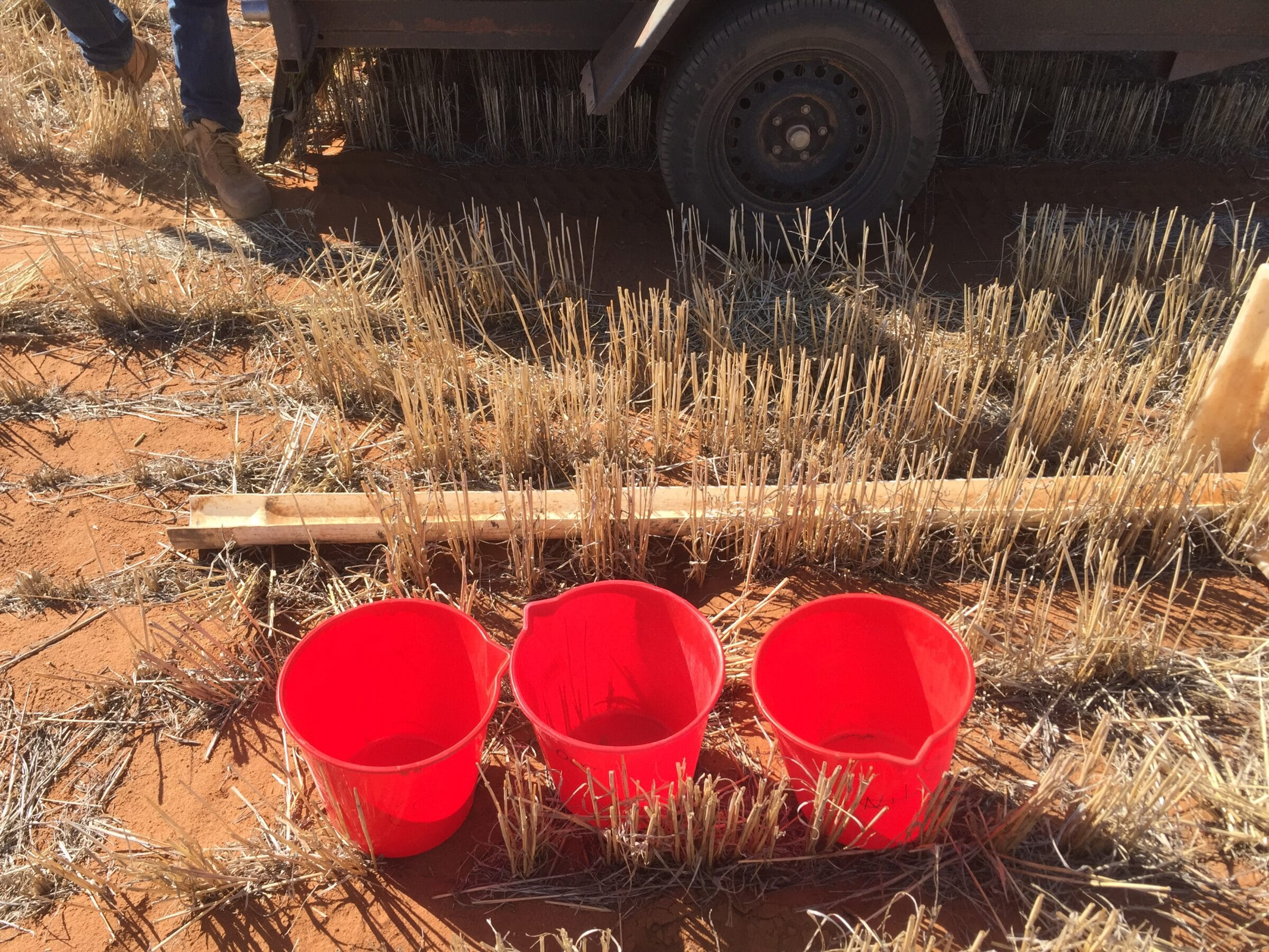 Sandy Soil Project (5th Year) - Increasing production on sandy soils: overcoming constraints to poor water use (CSP00203: 2016-2021) »